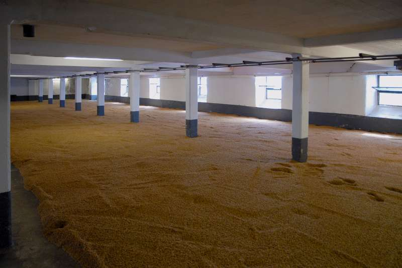 9-laphroaig-malting-floors