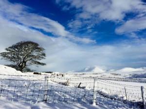 Ballygrant snow